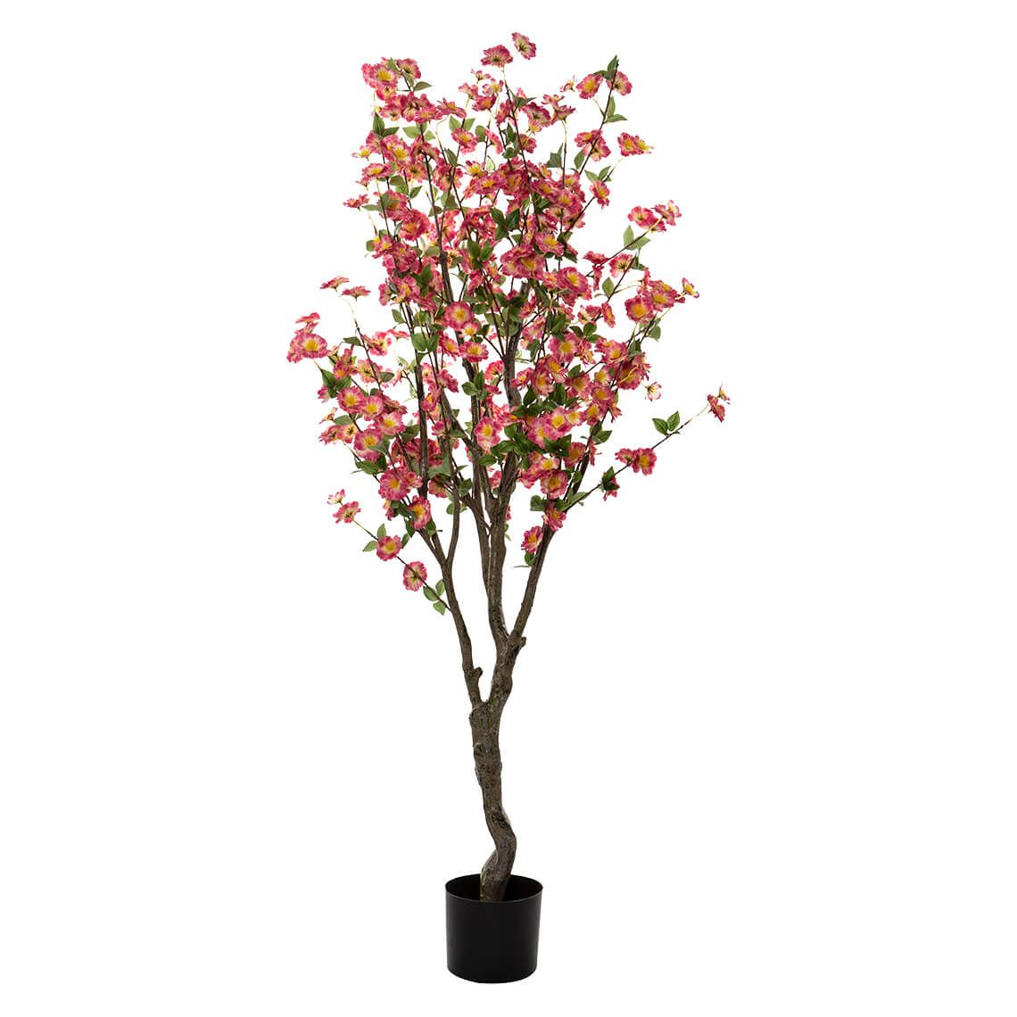 Blossom Tree Size W 70cm x D 70cm x H 150cm in Pink Freedom