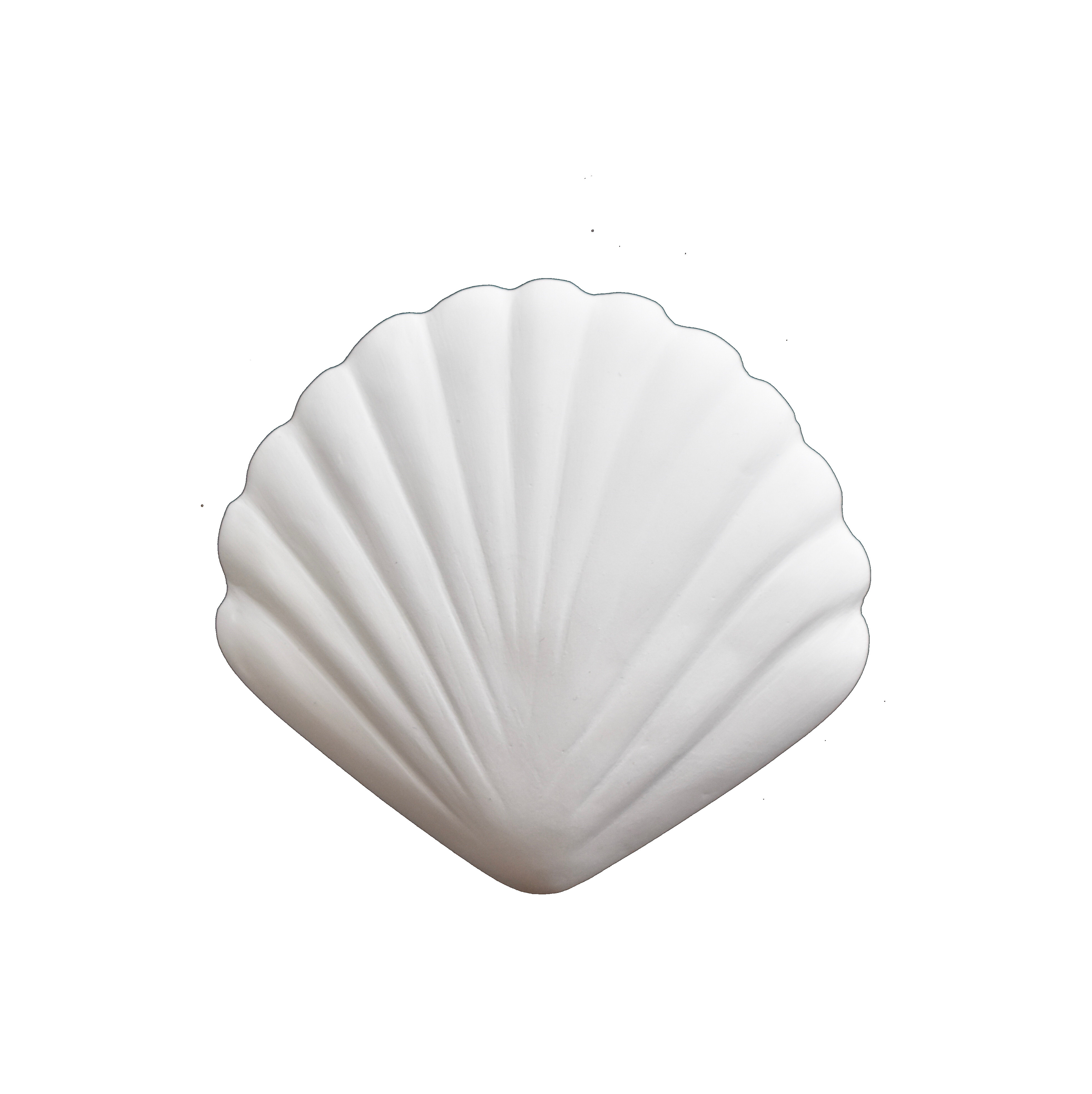 Summer Shells - Small Clam by My Kind of Bliss, a Wall Hangings & Decor for sale on Style Sourcebook