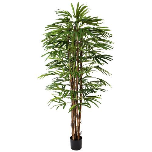 Potted Faux Rhapis Palm Tree Size: 200cm