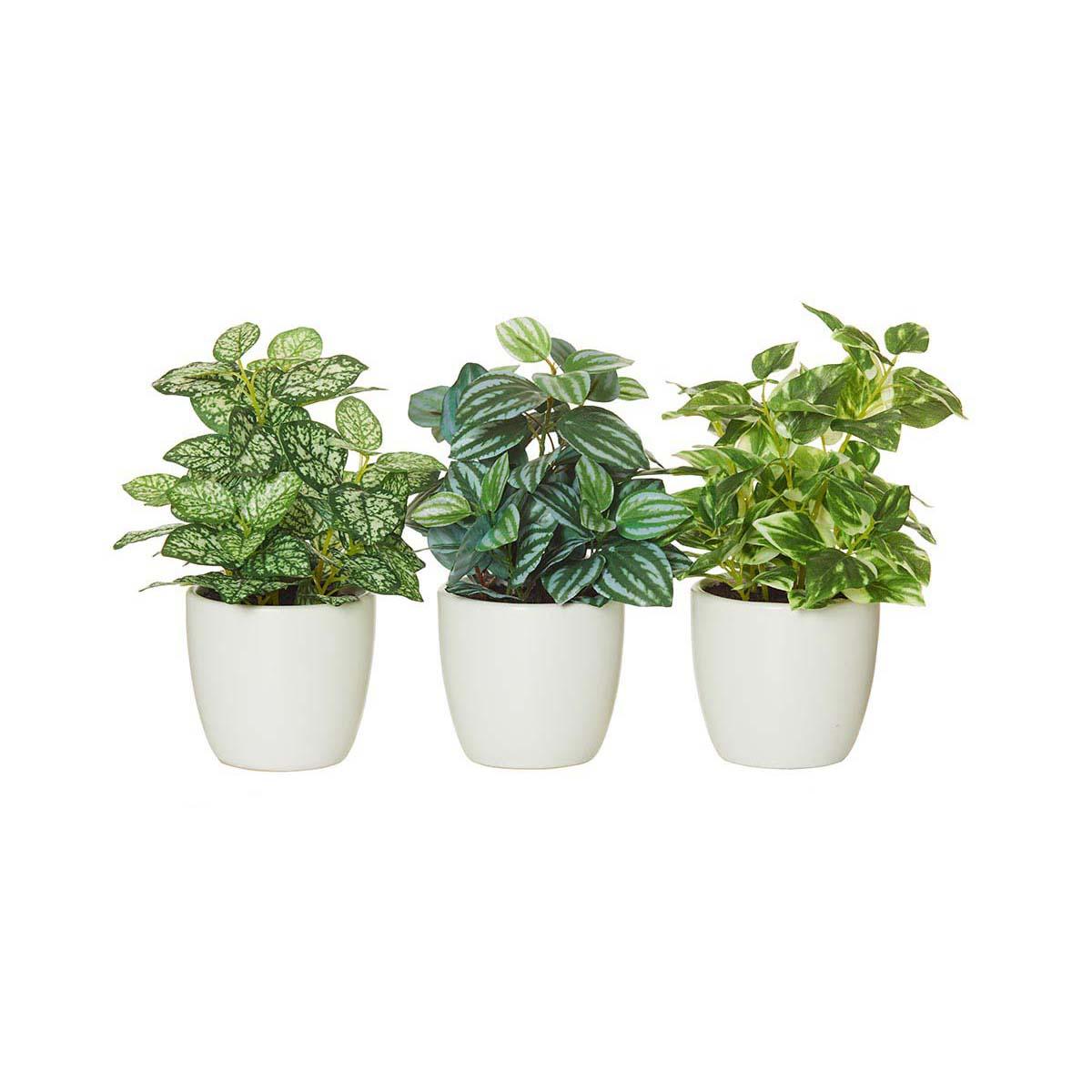 GARDEN PLANT POT SET OF 3 in white