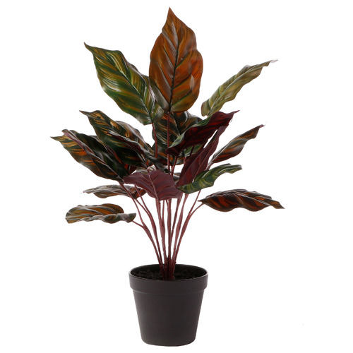 47cm Potted Faux Peacock Plant