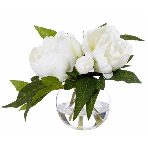 Peony Sphere Flower Arrangement by James Lane, a Plants for sale on Style Sourcebook