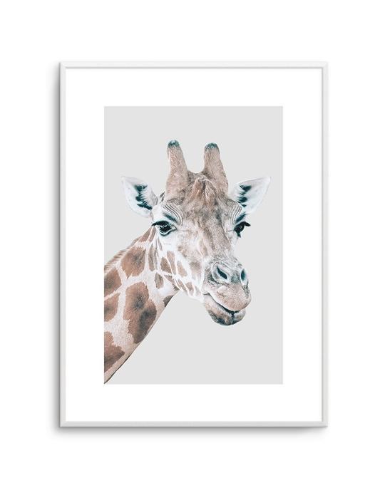 Giraffe PT