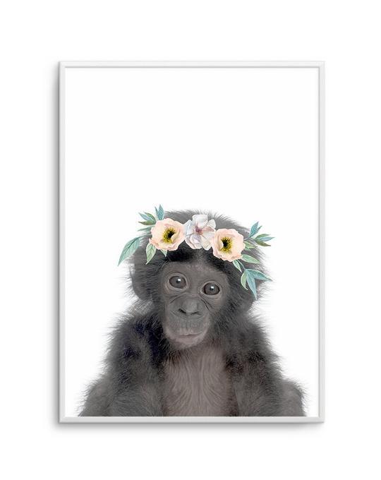 Little monkey   Girls