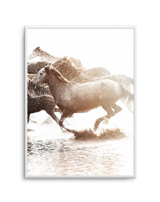 Riviere Stallions | Right