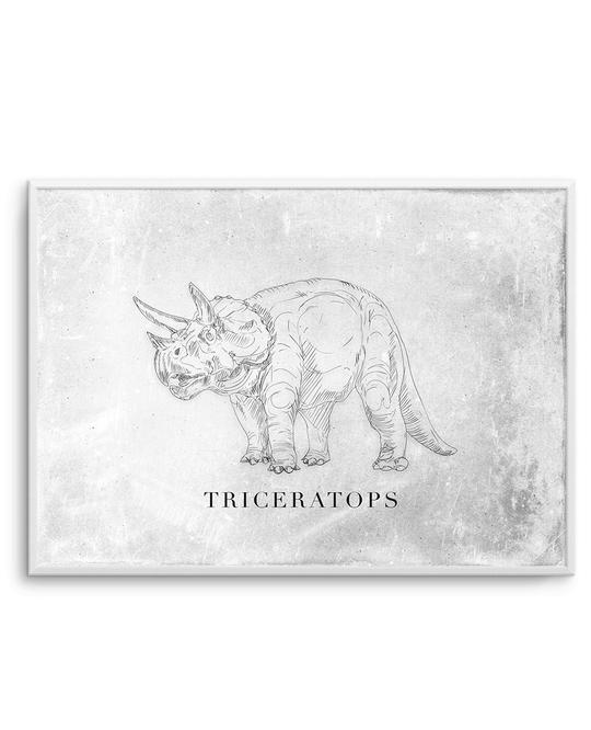 Triceratops | LS | Dinosaur Collection