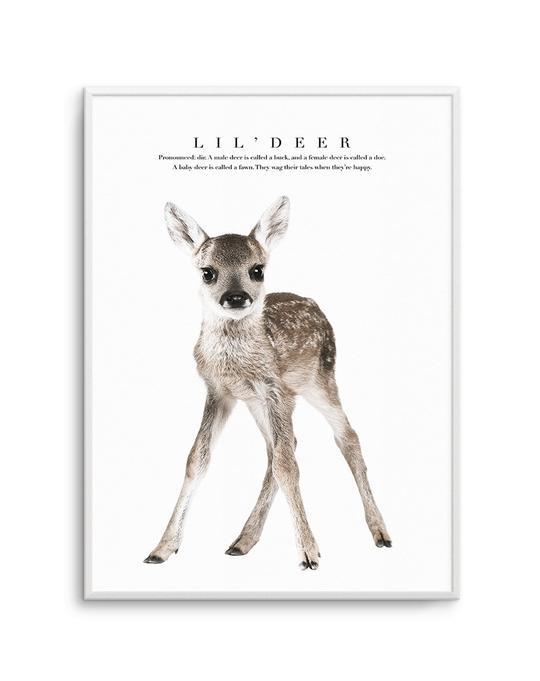 Lil' Deer
