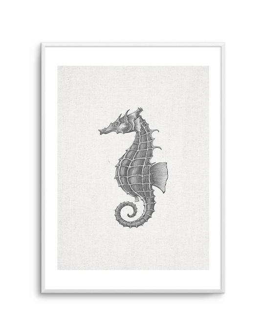 Seahorse On Linen