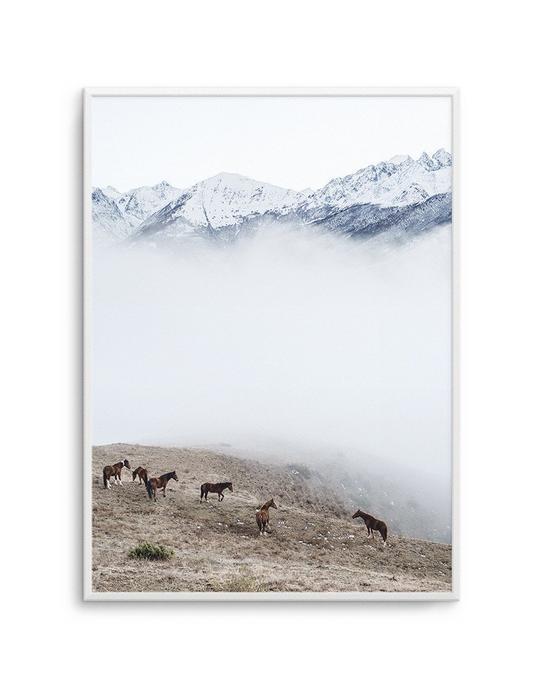 Mountain Horses | PT