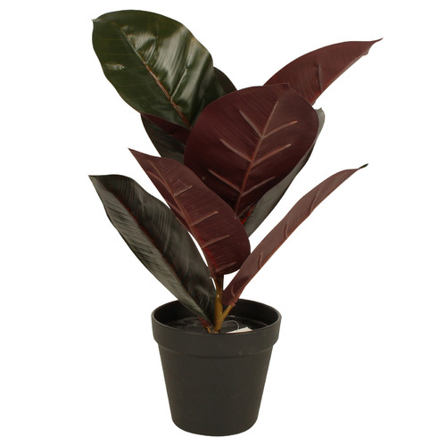 36cm Potted Faux Real Touch Burgundy Rubber Plant