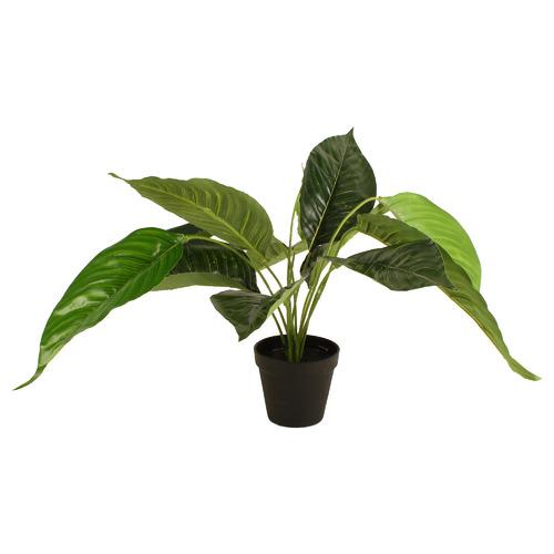 55cm Potted Faux Peace Lily Plant