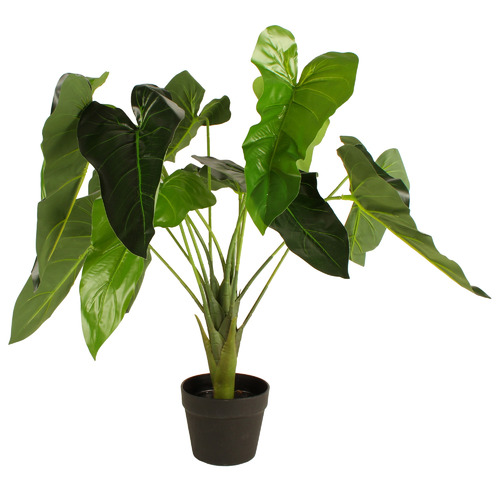 70cm Potted Faux Green Arrow Arum Tree