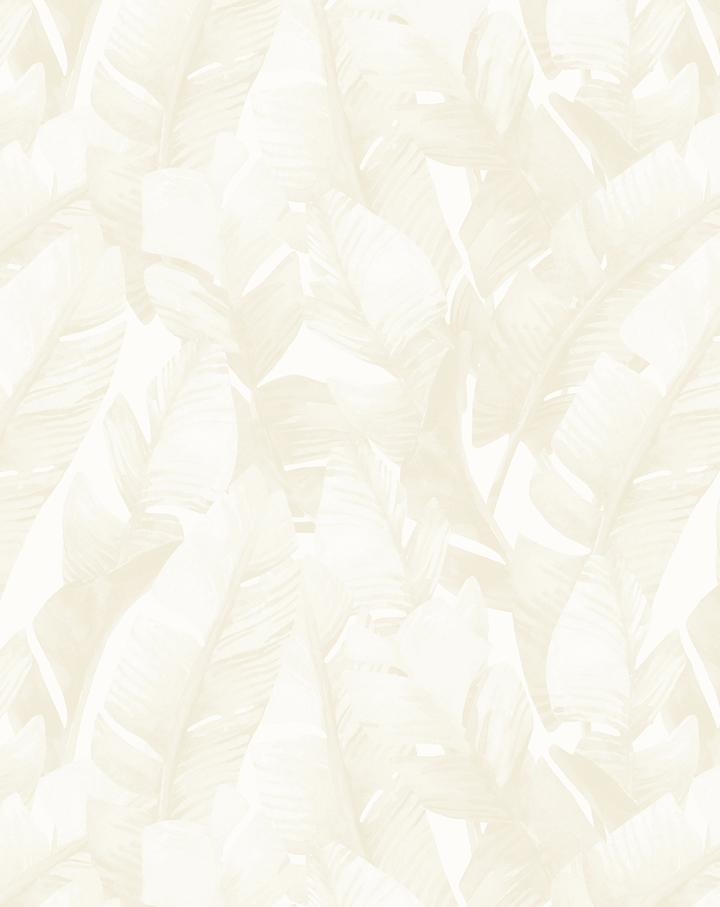 Banana Leaf Palms   Sand Wallpaper
