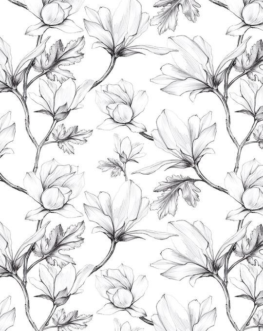 Magnolia Sketch Wallpaper