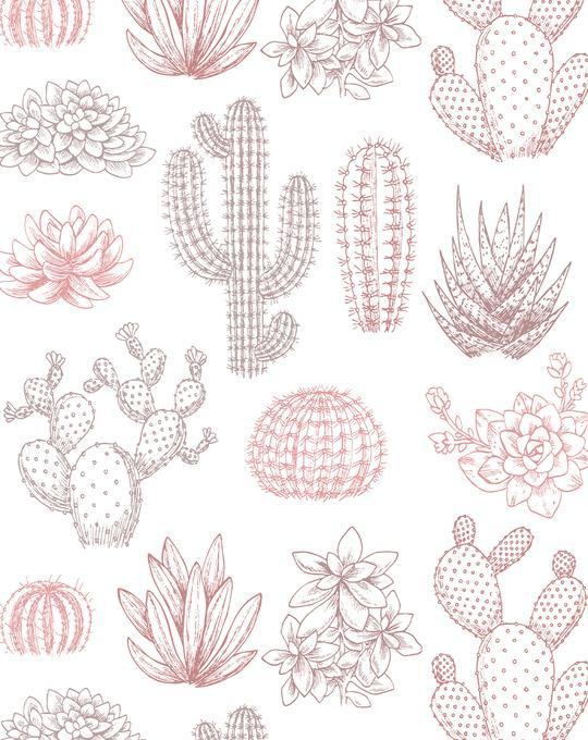Vintage Cactus Garden Wallpaper