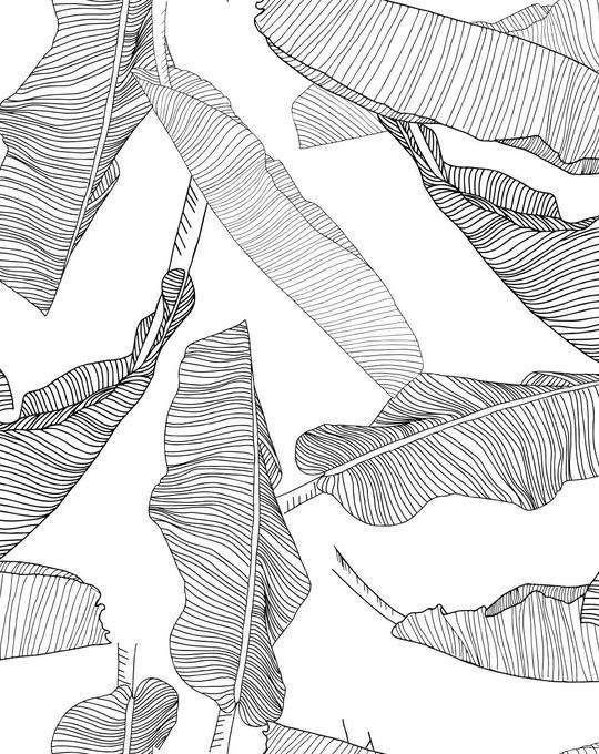 Floating Palm Leaves Wallpaper
