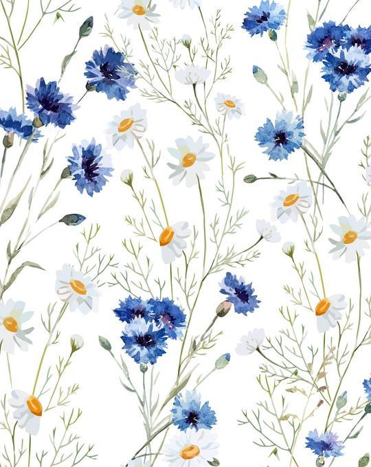 Where the Wildflowers Grow Wallpaper