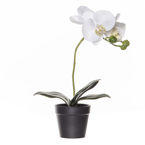 30cm Potted Faux Butterfly Orchid Plant