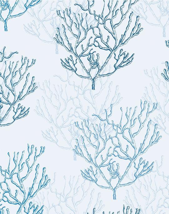 Hamptons Coral Wallpaper