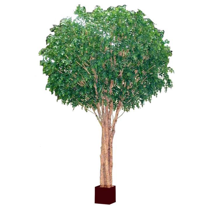 Giant Artificial Beech Tree, 570cm