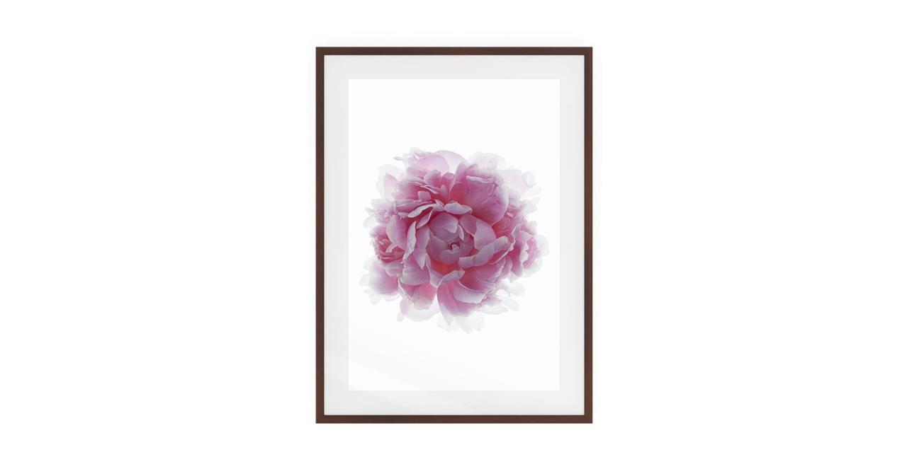 The Blossom Print Black Wood Frame Small Three