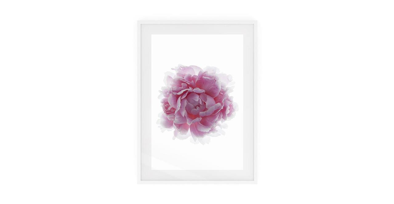 The Blossom Print White Wood Frame Small Three