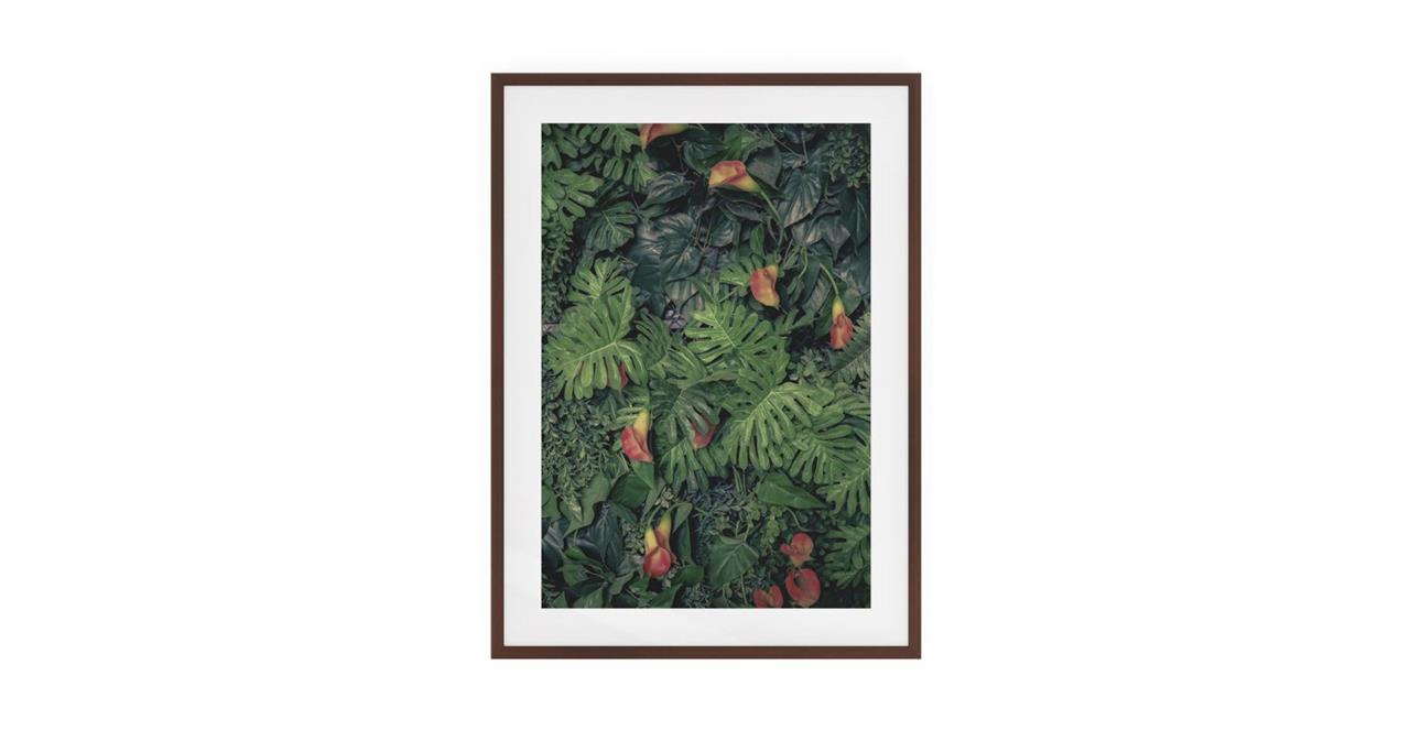 The Arum Print Dark Brown Wood Frame Small