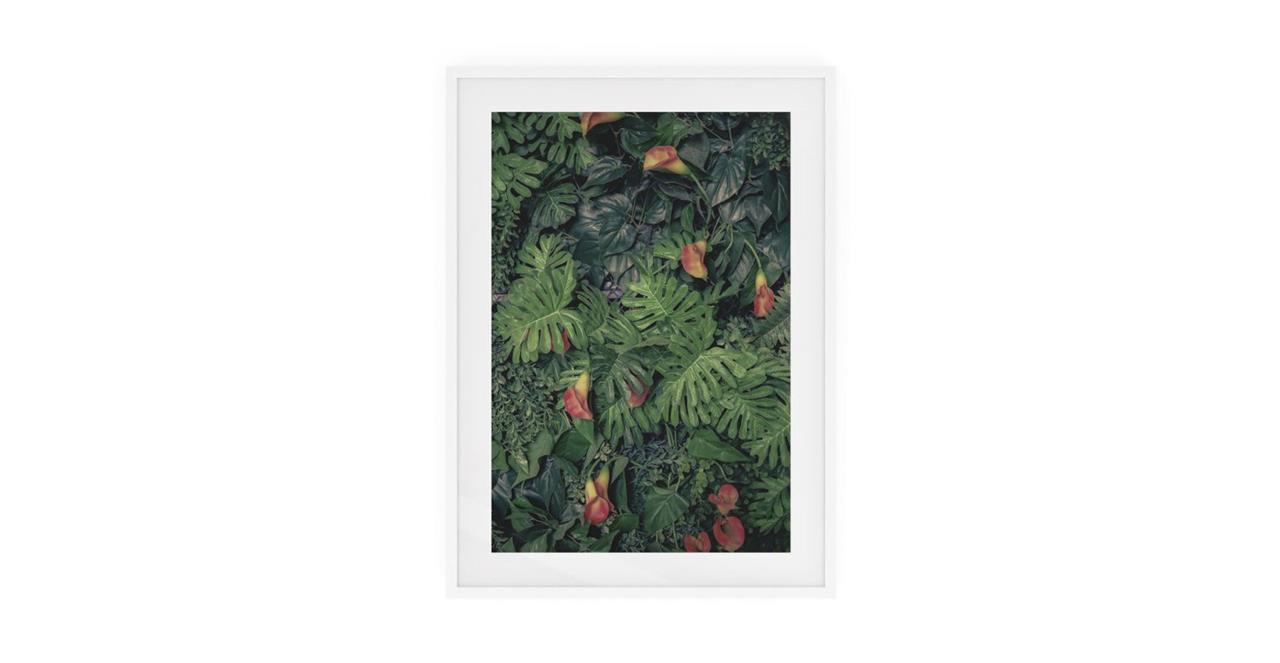 The Arum Print White Wood Frame Medium
