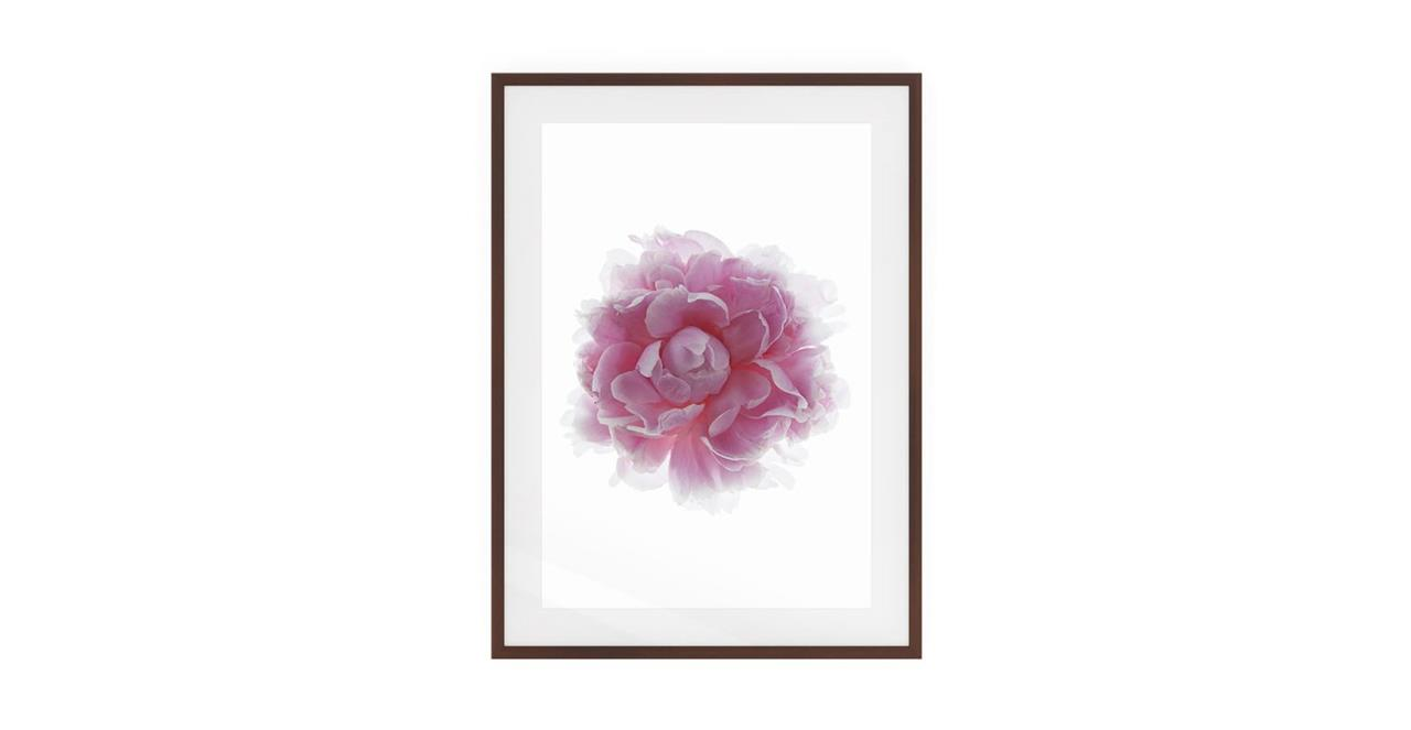 The Blossom Print Dark Brown Wood Frame Small Two