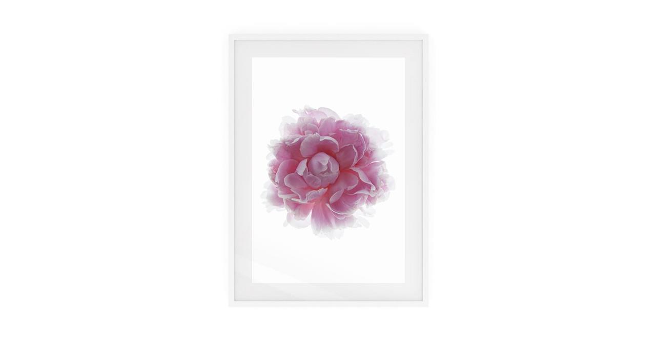 The Blossom Print White Wood Frame Medium Two