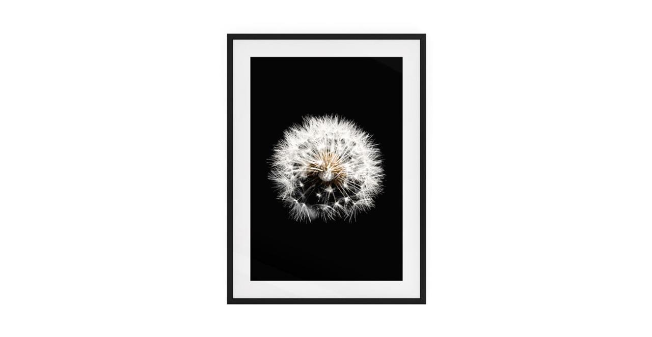 The Dandelion Print Black Wood Frame Medium Three