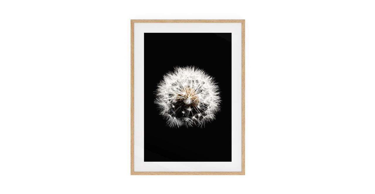 The Dandelion Print Natural Wood Frame Medium Three