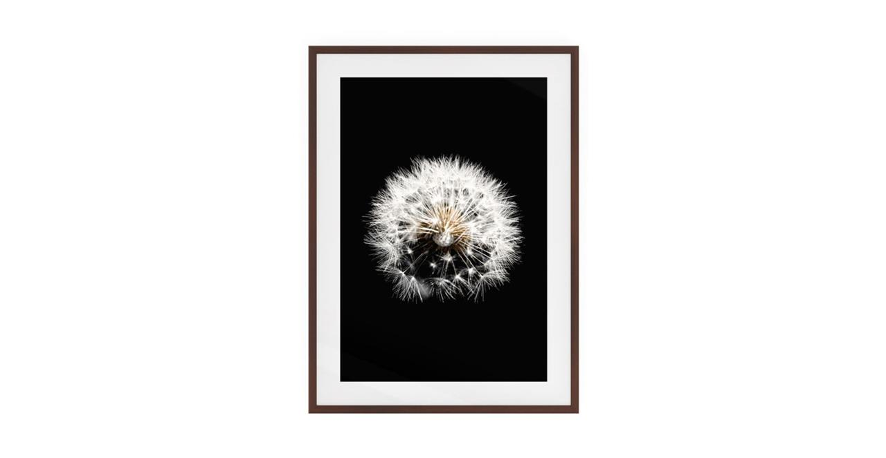 The Dandelion Print Dark Brown Wood Frame Medium Three
