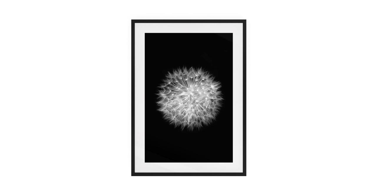 The Dandelion Print Dark Brown Wood Frame Small Two