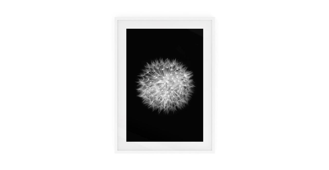 The Dandelion Print White Wood Frame Medium Two