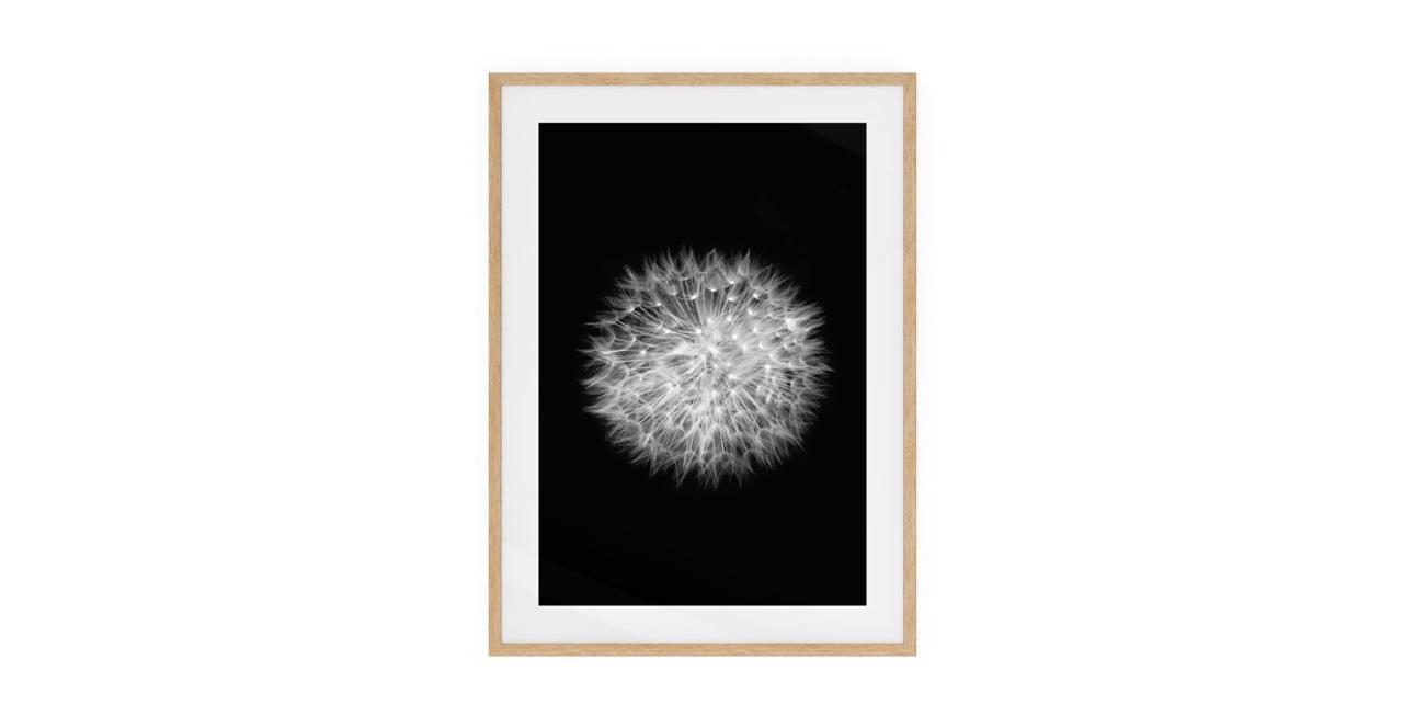 The Dandelion Print Natural Wood Frame Medium Two