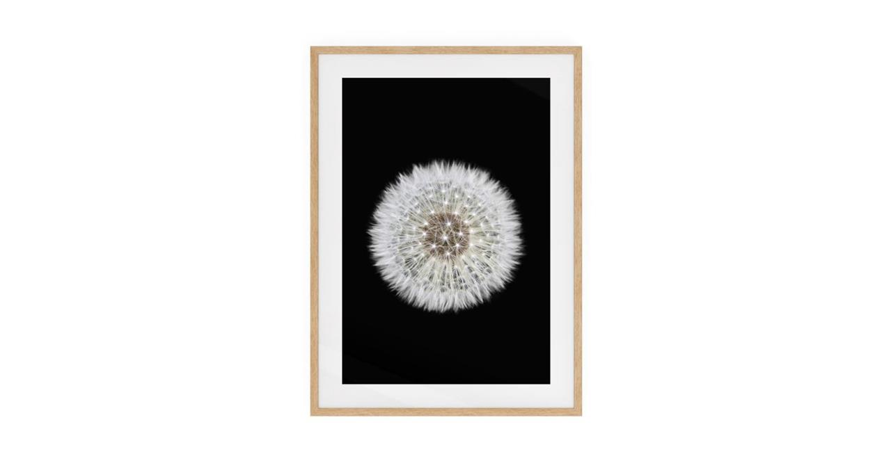The Dandelion Print Natural Wood Frame Medium One