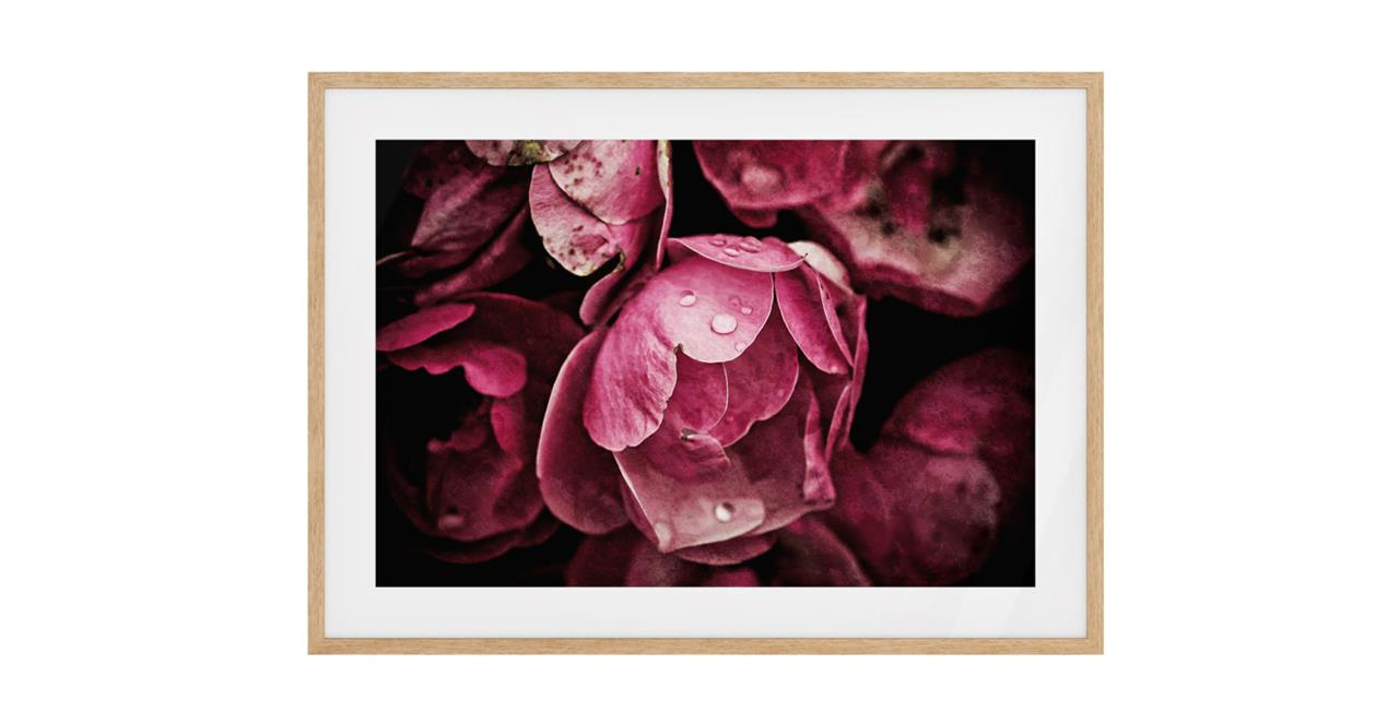 The Dew Drop Print Natural Wood Frame Small