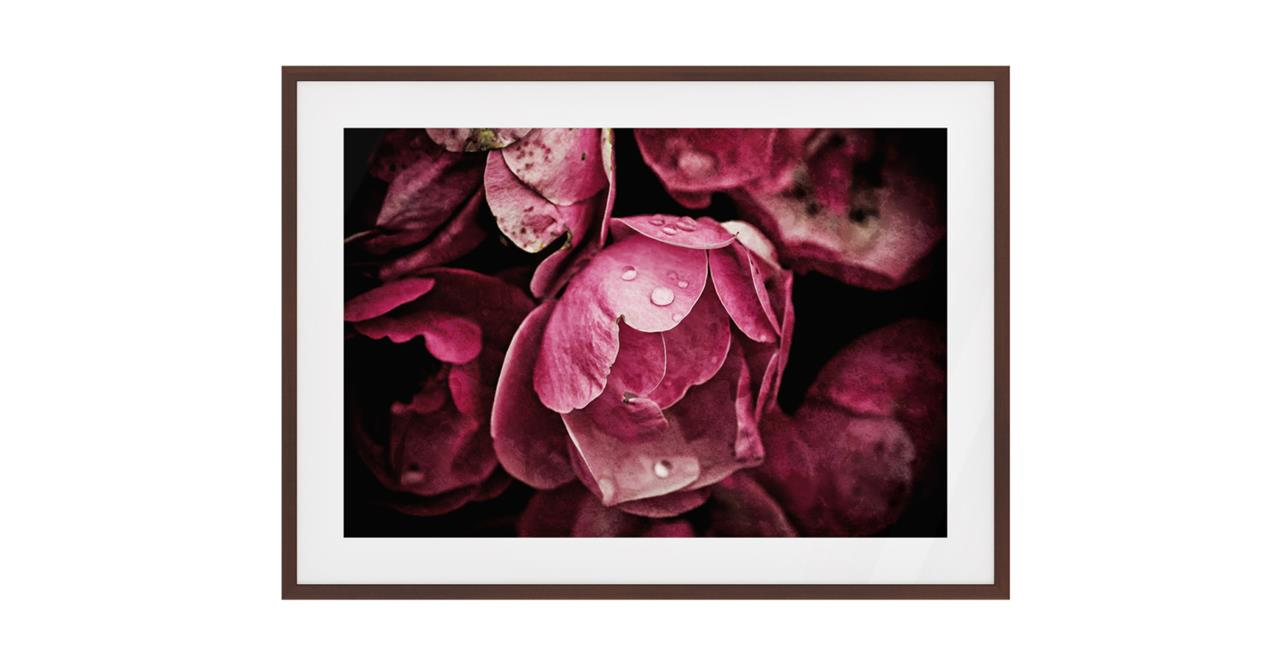 The Dew Drop Print Dark Brown Wood Frame Medium
