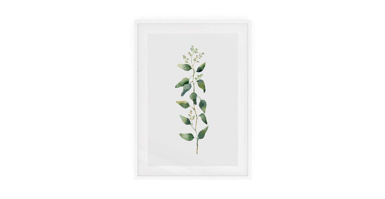 The Eucalyptus Print White Wood Frame Small Branch