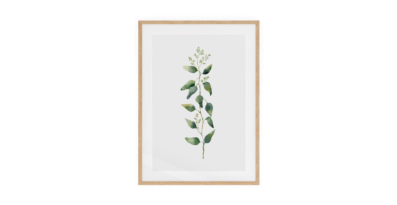 The Eucalyptus Print Natural Wood Frame Medium Branch