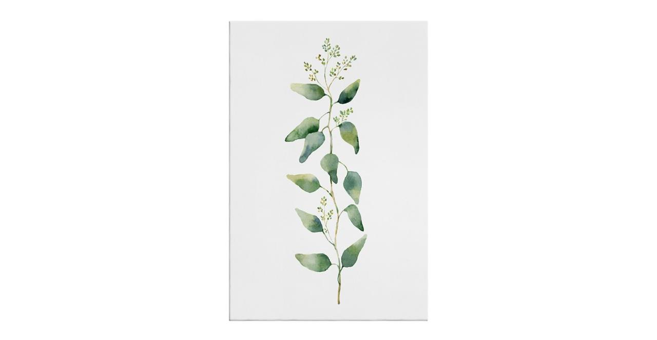 The Eucalyptus Print Canvas Medium Branch