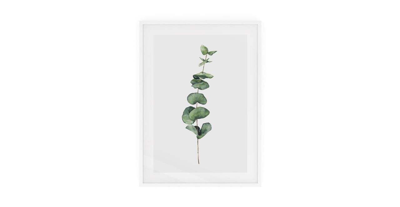 The Eucalyptus Print White Wood Frame Small Seeded