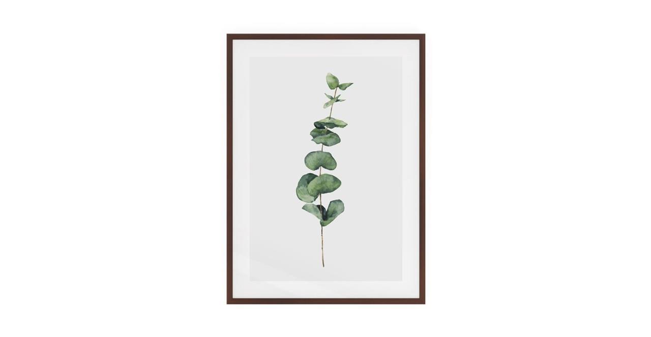 The Eucalyptus Print Dark Brown Wood Frame Small Seeded