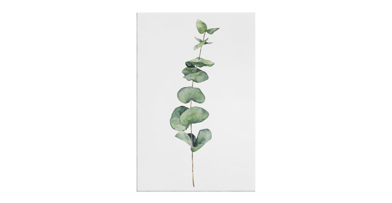 The Eucalyptus Print Canvas Medium Seeded