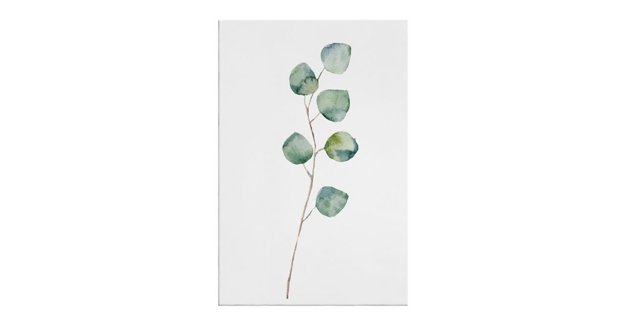 The Eucalyptus Print Canvas Medium Silver Dollar
