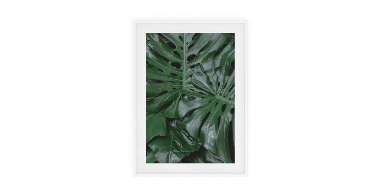 The Philodendron Print White Wood Frame Small