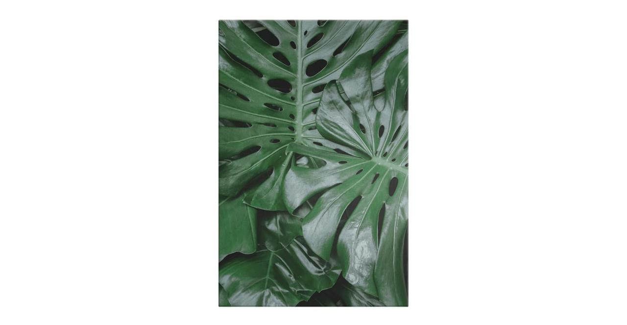 The Philodendron Print Canvas Small
