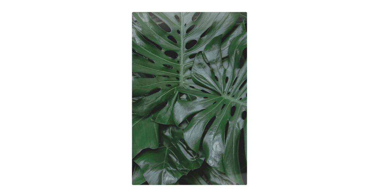 The Philodendron Print Metal Print Small
