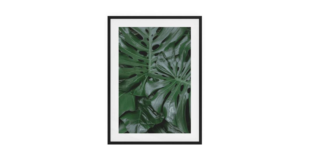 The Philodendron Print Black Wood Frame Medium